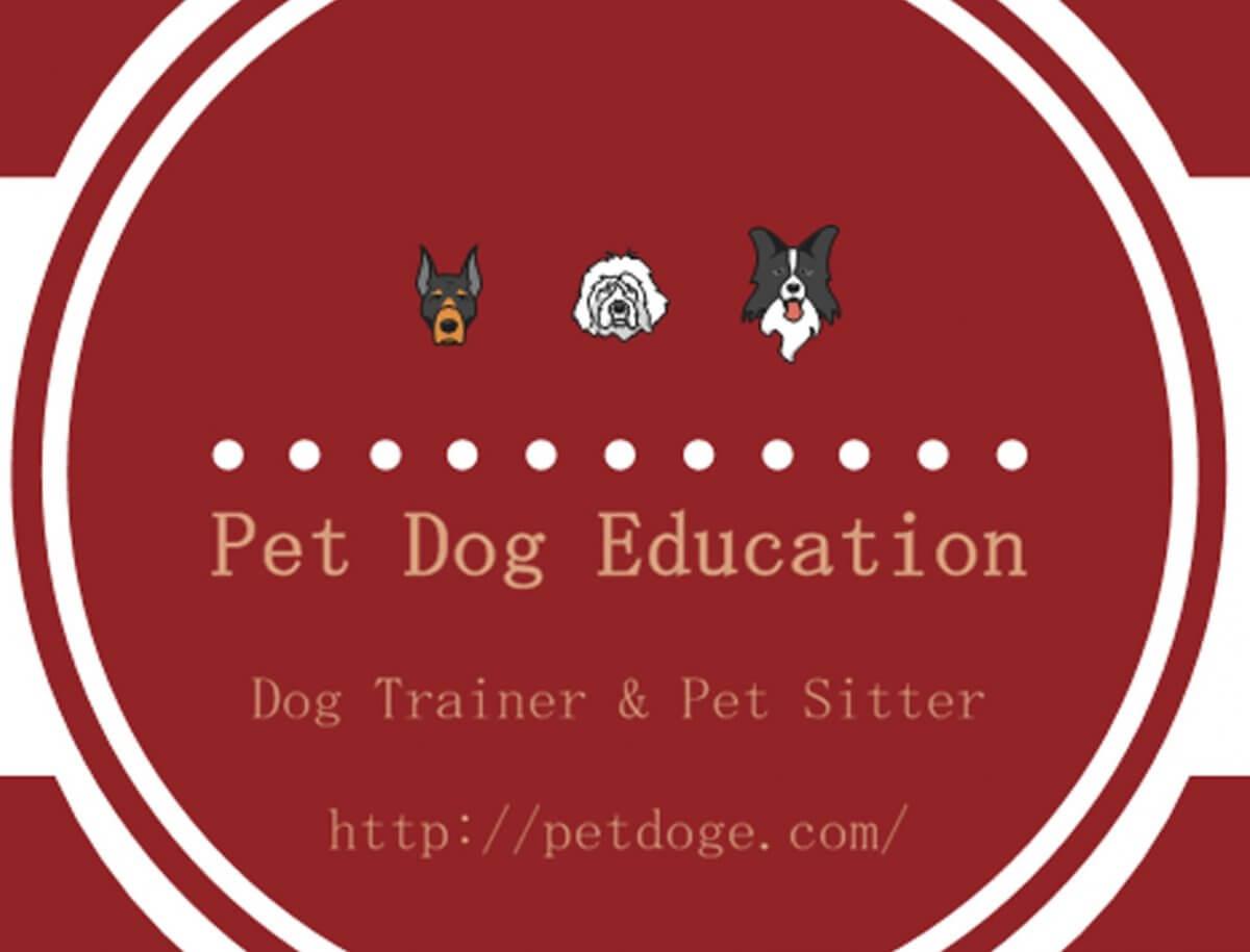 Pet Dog Education LOGO